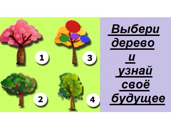 Тест. Выбери дерево и узнай своё будущее.