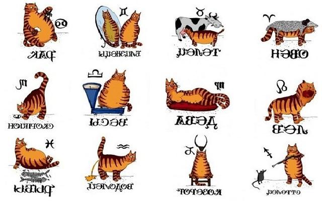 Узнайте каким чувством юмора обладает каждый из знаков Зодиака.
