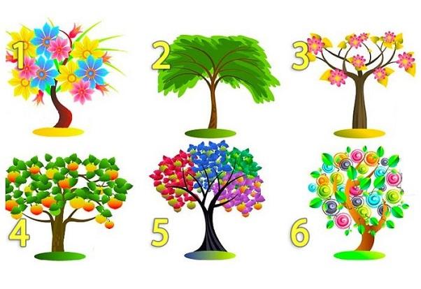 Выбери дерево и узнай секрет о себе.