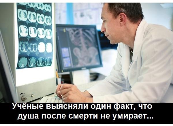 Учёные доказали, что душа не умирает...