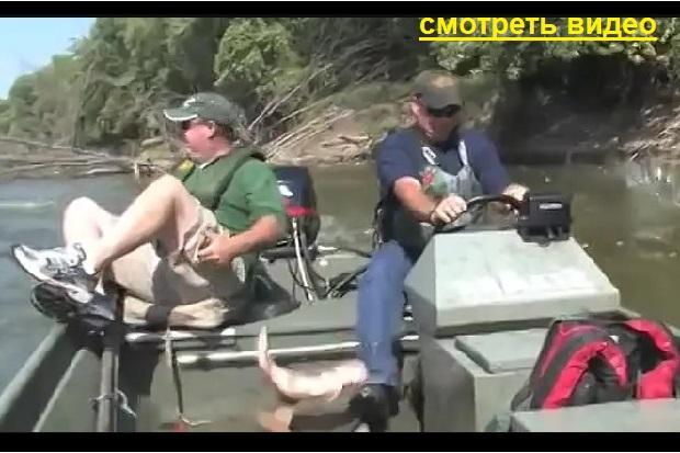 Видео. Самая лёгкая рыбалка! Ты не поверишь..
